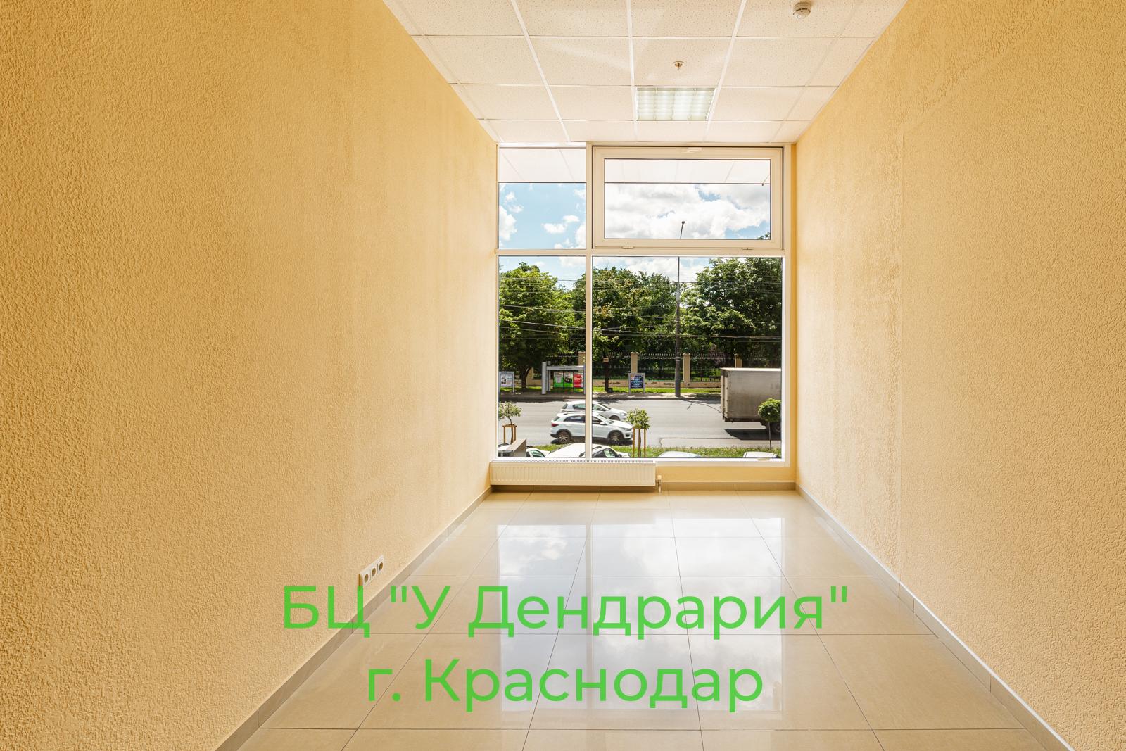фото-2